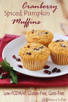 Cranberry Spiced Pumpkin Muffins {Low-FODMAP, Gluten-Free, Gum-Free ...