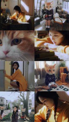 Extended Play, Los Angeles Wallpaper, Wallpaper Iphone Disney, Pastel Floral, Trendy Wallpaper, Olivia Hye, Girls World, Pattern Wallpaper, K Idols