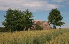 Tilgalu meadow