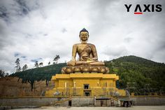 Thailand continues to attract Indians in droves as the first half of 2016 saw 38 percent of all Indian travellers choosing this Asian nation to travel to. #YAxisThailand #YAxisBhutan #YAxisVisas