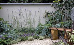 Gartenwissen: Absonniger Standort