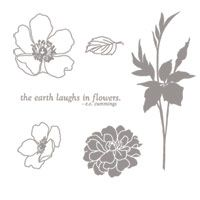 Fabulous Florets - Clear-Mount Stamp Set - by Stampin' Up!