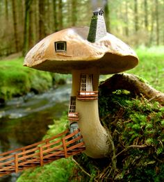 hello enchanting little mushroom house!