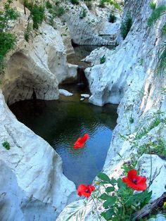 Sardegna- Pozze lungo il Rio Pitrisconi, nell'entroterra di San Teodoro. Foto di Mario Cadinu.