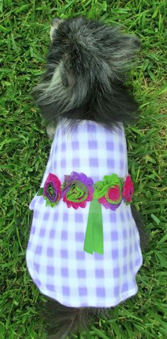 Dog Clothing Toy Breed Fleece Made to by BloomingtailsDogDuds, $23.95