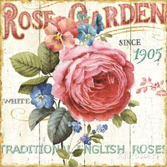 オールポスターズの リサ・オーディット「Rose Garden I」ポスター