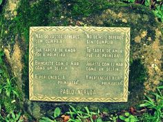 Pablo Neruda Quotes and Poetry