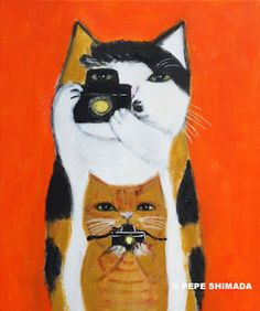 "pepeart : ""Cat photographers"""