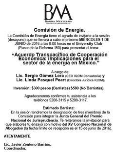 Comite-Energia