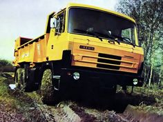 Tatra T815 Agro Heavy And Light, Heavy Truck, Central Europe, Car Ins, Czech Republic, Motor Car, Classic Cars, Automobile, Monster Trucks