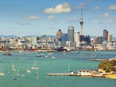 Just three hours flight from Australia's East Coast, Auckland is a world-class city with natural wonders on its doorstep. Here's what to know before you go.