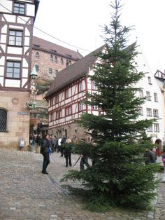 A Christmas tree by the Albrecht Durer House in Nuremberg.
