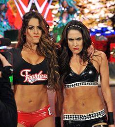 WWE Brie Bella with Divas Champion Nikki Bella vs Natalya