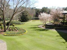Callaway Gardens, Pine Mountain, Georgia. ~~ 3/23/2001