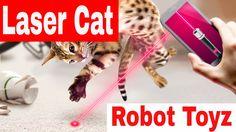 LASER POINTER - NEW LASER POINTER ROBOT - LASER POINTER CAT - LASER CATS