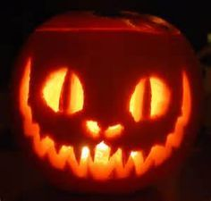 alice in wonderland cat pumpkin - Google Search