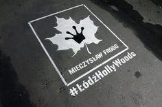 Milk Graffiti for Regionalna Dyrekcja Lasów Państwowych
