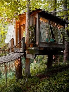 DIY Tree House Ideas & How To Build A Treehouse (For Your Inspiration) Amazing Tiny tree house kids Architecture Modern Luxury treehouse interior cozy Backyard Compact tr Future House, My House, Cool Tree Houses, Pallet Tree Houses, Tree House Designs, Cabins In The Woods, Play Houses, My Dream Home, Dream Homes