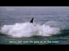Michael W. Smith - Awesome God [+ Lyrics] This video is BEAUTIFUL.  Gives us a small glimpse of the amazing things our Lord has created.
