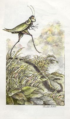 Grasshopper on the Road (Arnold Lobel)