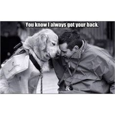 This is why they are called man's best friend