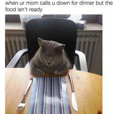 Mom lies: