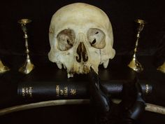 Trident Edition Queen of Hell Primal Craft, Trident, Witchcraft, Skull, Crafts, Witches, Inspiration, Queen, Heart