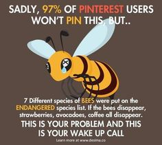 Do your part to save the Bees. - Food Meme - Do your part to save the Bees. The post Do your part to save the Bees. appeared first on Gag Dad. Weird Facts, Fun Facts, Unique Facts, Funny Animals, Cute Animals, Save Our Earth, Wake Up Call, Garden Guide, Sad Stories