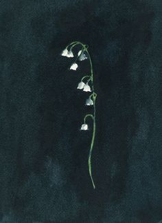 Courage to Remember - Lily of the Valley Study by Renée Anne Bouffard-McManus