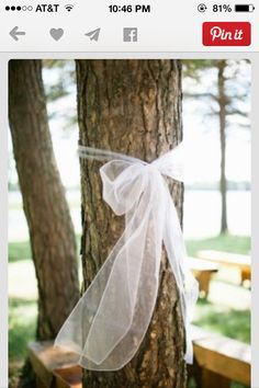Outside wedding! Must have for all trees. Decorate each tree with your colors. Mint tulle. Yellow tulle. Whichever brightens the yard!
