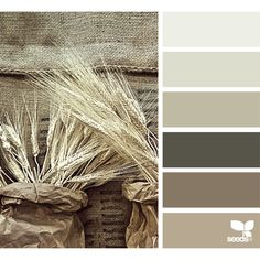 Nature Tones ❤ liked on Polyvore featuring colors and design seeds