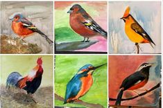 how to paint. watercolor, bird, speed painting youtub video of a bird