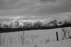 https://flic.kr/p/RLnMU9 | Winter Landscape
