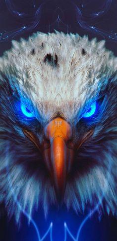 Eagl e iPhone Wallpaper Wild Animal Wallpaper, Eagle Wallpaper, Tier Wallpaper, Wolf Wallpaper, Eagle Images, Eagle Pictures, 4k Wallpaper Iphone, Galaxy Wallpaper, Best Iphone Wallpapers