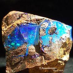 Boulder Opal Specimen Minerals And Gemstones, Rocks And Minerals, Crystals And Gemstones, Types Of Crystals, Buy Crystals, Healing Crystal Jewelry, Healing Crystals, Rainbow Topaz, Emerald Pendant