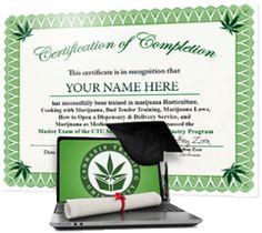 Cannabis Training University - Certificate