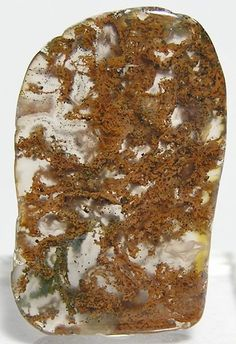 Moss Agate Minerals And Gemstones, Crystals Minerals, Rocks And Minerals, Stones And Crystals, Cool Rocks, Beautiful Rocks, Rock Collection, Crystal Grid, Rocks And Gems