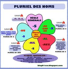 French grammar - Plural of nouns French Language Lessons, French Language Learning, French Lessons, French Teaching Resources, Teaching French, French Worksheets, Material Didático, French Education, French Expressions