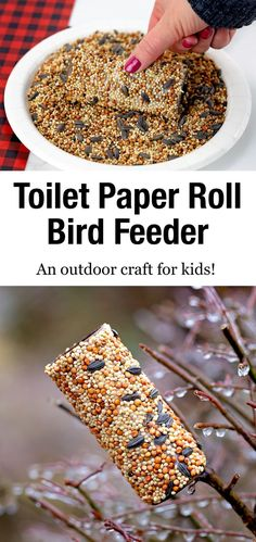 Wild birds will thank you for taking the time to make a Toilet Paper Roll Bird Feeder. It& an easy and fun bird feeder craft for kids of all ages! via Fireflies and Mud Pies Bird Feeders For Kids To Make, Make A Bird Feeder, Bird Feeder Craft, Best Bird Feeders, Homemade Bird Feeders, Spring Crafts For Kids, Art For Kids, Easy Bird, Kids Toilet
