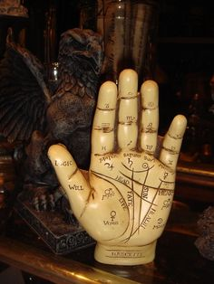 Small Palmistry Hand at Gothic Rose Antiques http://www.gothicroseantiques.com/SmallPalmistryHand.html