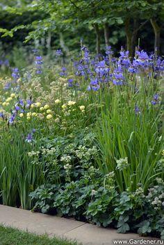 Chelsea Flower Show - 2014 | Show Gardens
