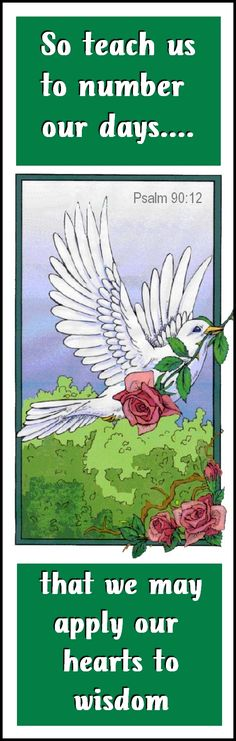"""#bible #psalm #bird #flowers  ...  Have you visited """"IT"""" yet? ... The new Social Network.?...  https://lifeonit.com/?invite=1027009 ...   http://thesupergranny.net/"""