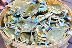 how to cook blue swimmer crabs at home