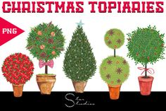 Christmas Topiaries pack by Star Studios on Creative Market