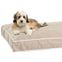 Water resistant, machine washable and super comfy rectangular dog bed for your furry. Love the fun colors it comes in!