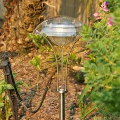 These solar powered path lights are made of stainless steel with a brushed copper finish. The white LED will add bright light to your home's yard. Garden Path Lighting, Outdoor Lighting, Outdoor Decor, Solar Path Lights, Solar Lanterns, Sun Power, Solar Led, White Lead, Yard Landscaping