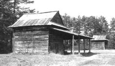 Distribution of Tobacco Barns in North Carolina~The state's oldest flue-cure barns are found in the Old Bright Belt and the northern Middle Belt along the Virginia border. The compact barns are most often built of hewn logs.