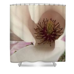 Earlyspring Shower Curtain featuring the photograph Early Spring by Janis Kirstein