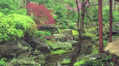 """""""Evoking Native Landscape Using Japanese Garden Principles"""" - This video previews one of Dr. David Slawson's talking points for his forthcoming skills development workshop at the 2014 NAJGA biennial conference this October 16-18 at the Chicago Botanic Garden."""