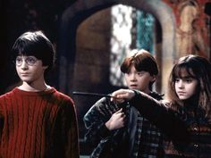 Harry Potter and the Sorcers Stone images | Harry Potter and The Sorcerer's Stone : Hermione's potions challenge ...